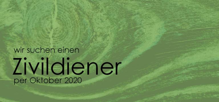 zivildiener 2020